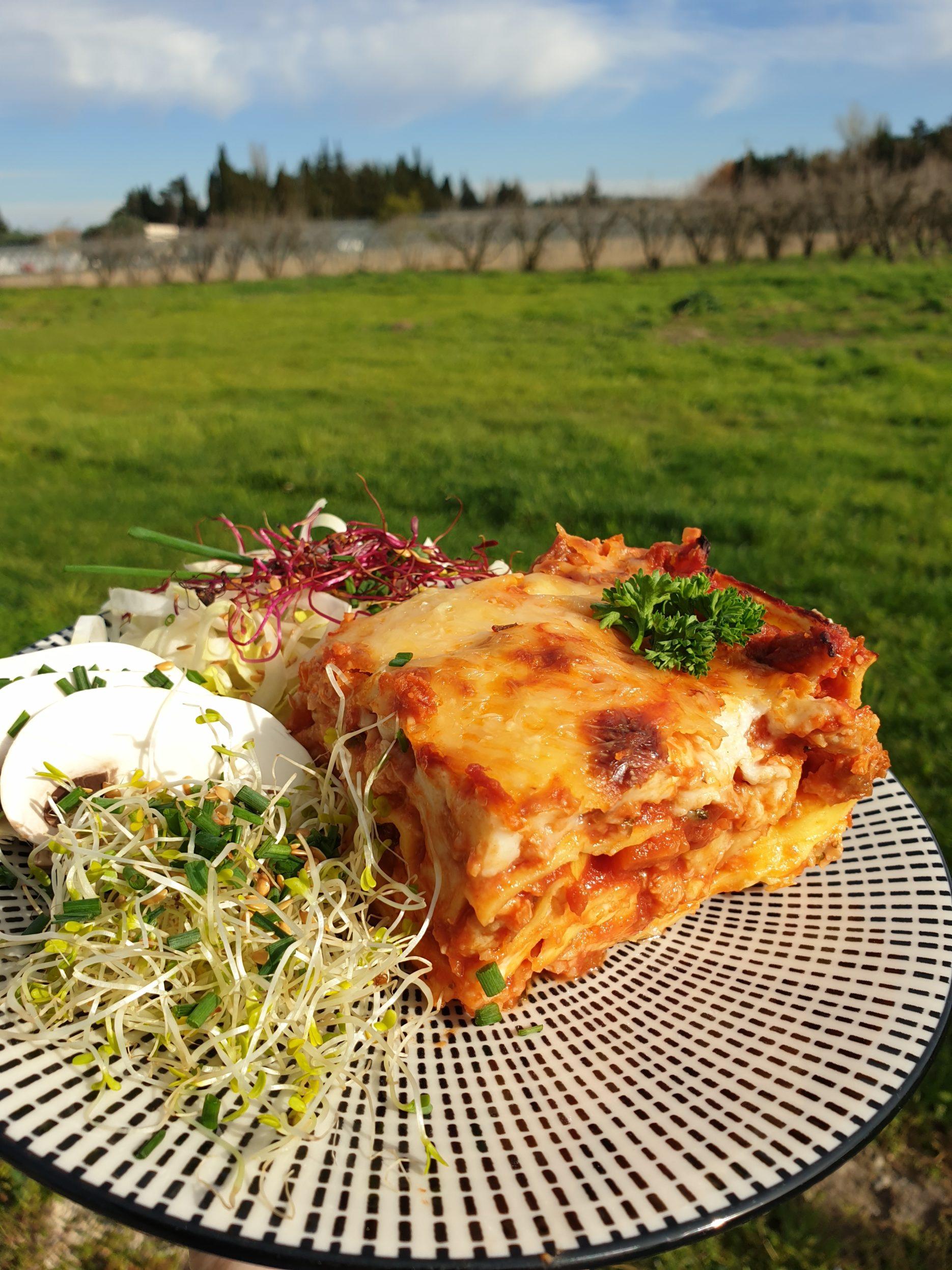 lasagnes végétariennes faciles aux protéines de soja