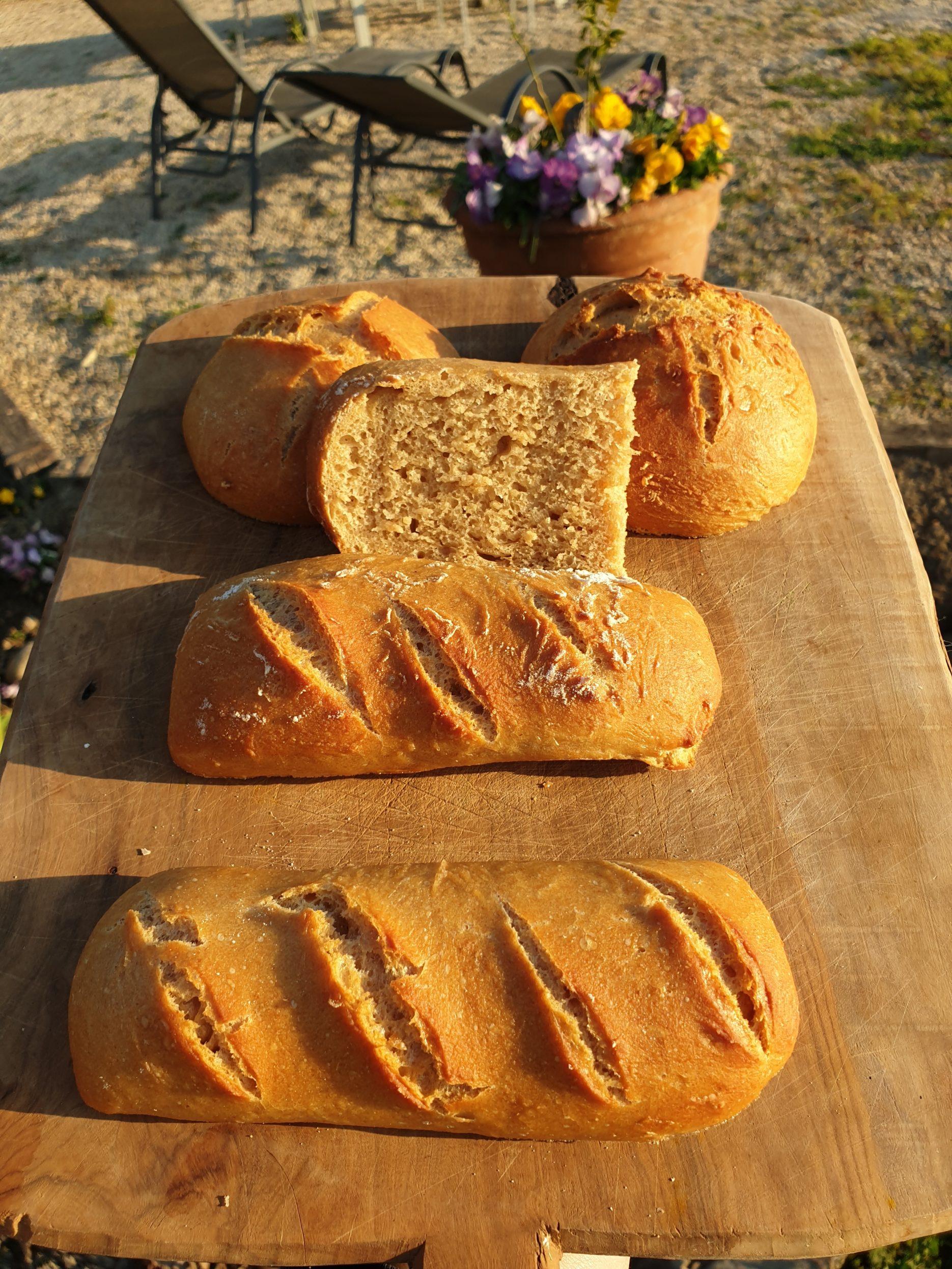 pain maison délicieux blé et petit épeautre