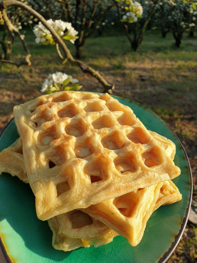 gaufre sans beurre et sans sucre