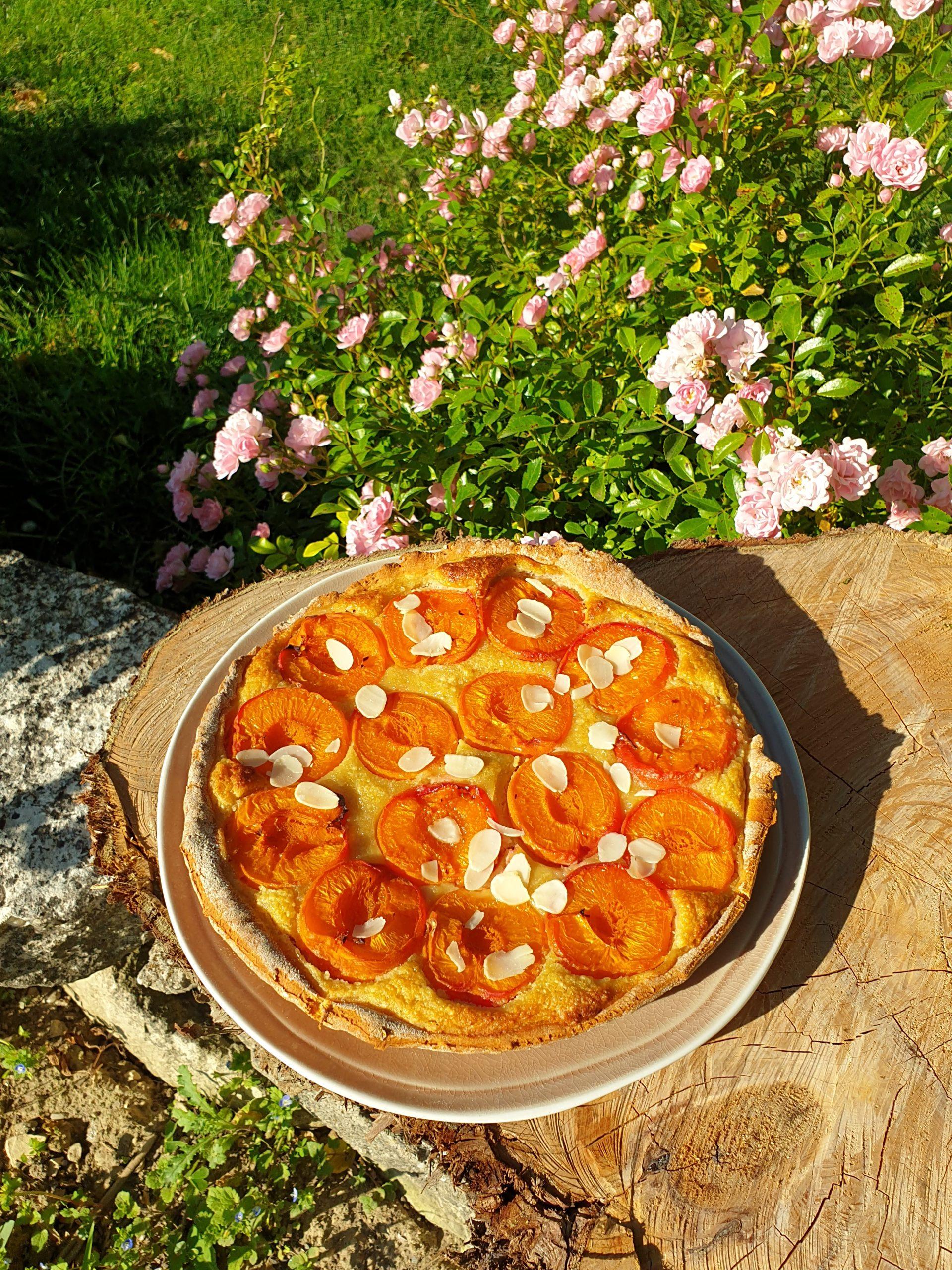 tarte abricots healthy