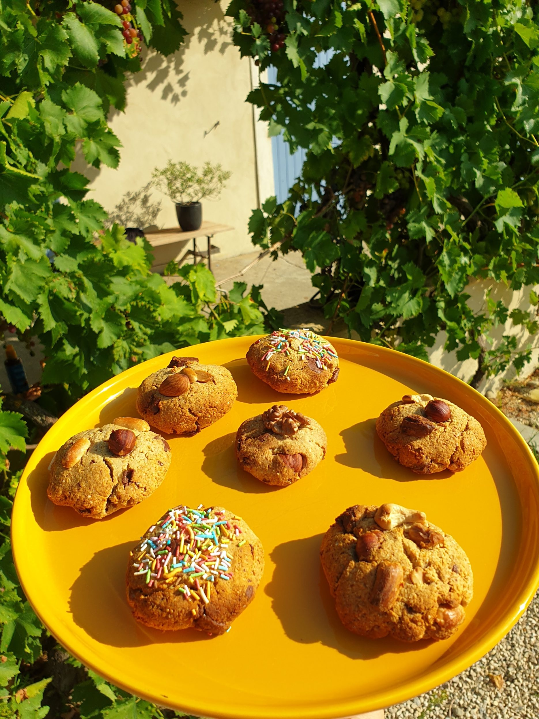 cookies vegan à l'okara